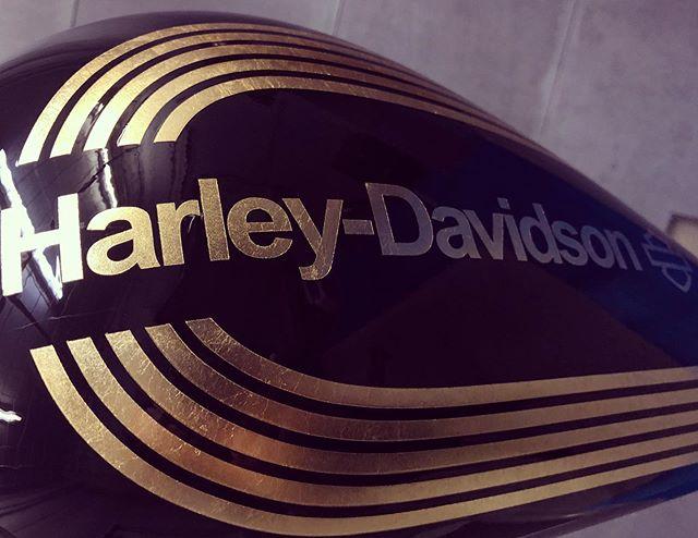 大人な主張♫#harleydavidson #dyna #blackparadejp @blackparadejp @fj_fxdl #coboo #custompaint