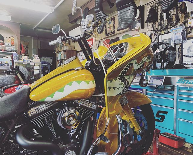 Maintenance day!#marumasumotorcyclelounge #cobrabike #coboo #unitedblockcustoms
