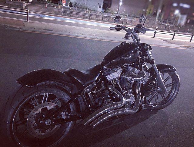 #cobooperformancelimited #cplfile バンコクからずっとバイクに乗りたくて... やっと乗れた〜♫寒いけど気持ちいい〜♫♫#cpl #breakout カスタムしたい♫#harleydavidson #fxbrs #fxbrs114